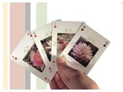 Le jeu de carte Latour-Marliac