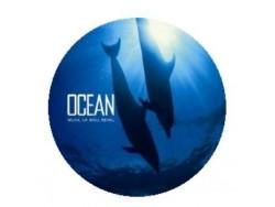 Music Cd - Ocean