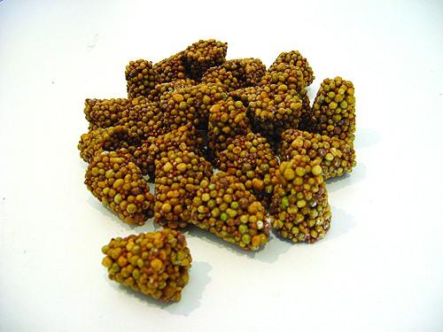 Pastilles d'engrais (Osmocote)