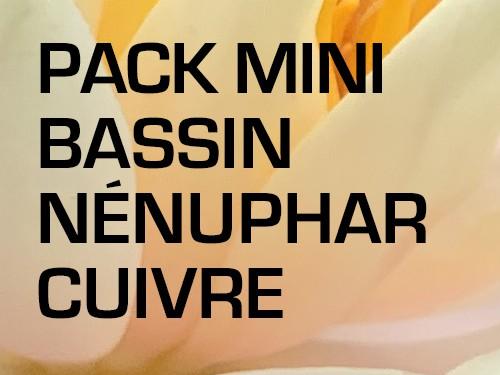 Pack Petit Bassin - Nénuphar rouge