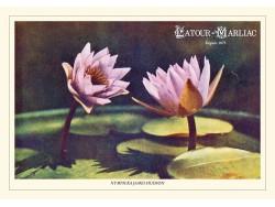 Carte postale 'James Hudson'