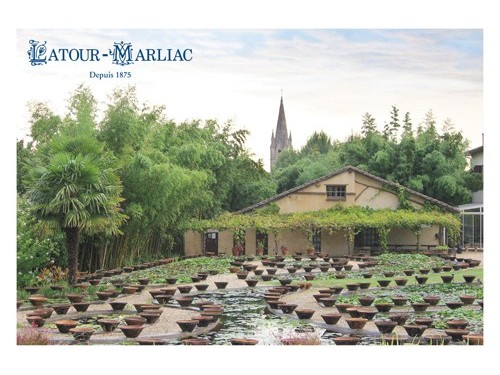 Post Card - 'Historical Pools Today'