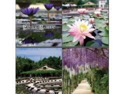 Latour-Marliac calendar